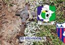 Encuentran crucifijos con cristo al revés enterrados en el estadio del Sonsonate.